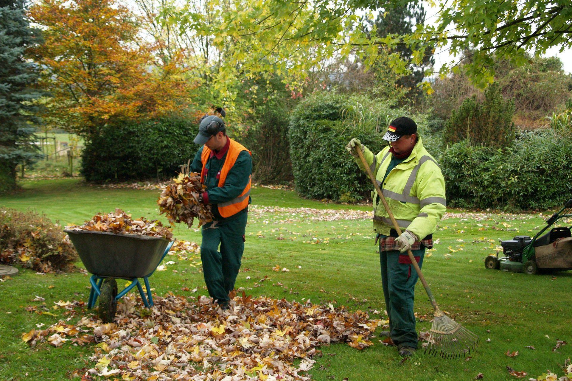 Garten und landschaftsbau caritas betriebs und for Garten und landschaftsbau